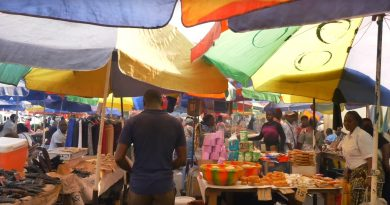 De marktplaats, wat kan je ermee?